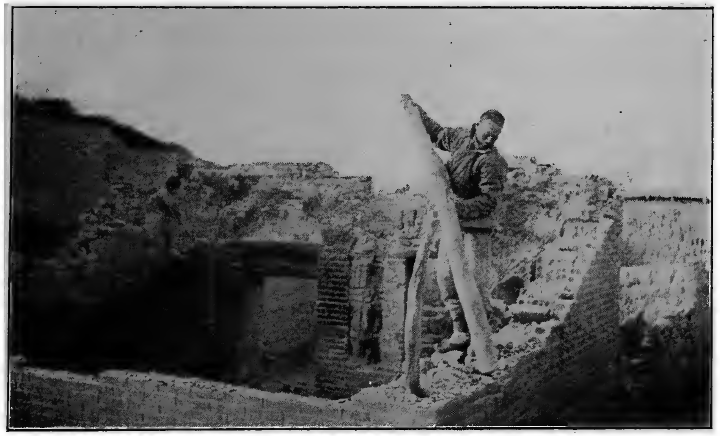 Famine dismantling house China 1921